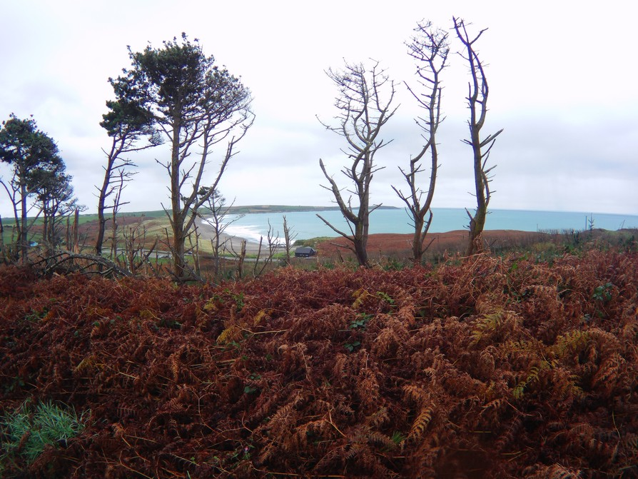 long strand from top of hill